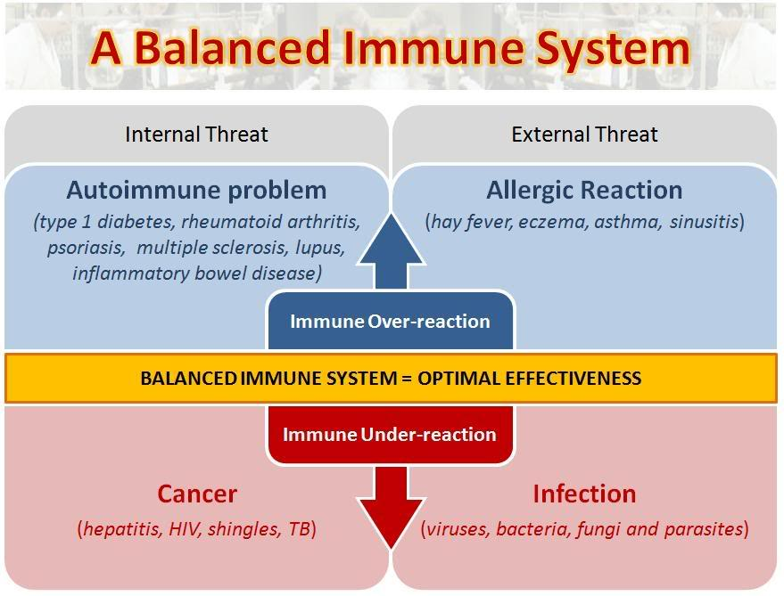 how to build immune system naturally