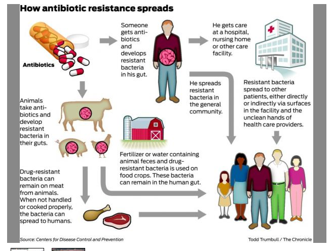 the rise of antibiotic resistant diseases essay At the beginning of the twenty-first century, the treatment of microbial diseases is increasingly complicated by drug resistance, the emergence of new pathogenic microbes, the relatively inefficacy of antimicrobial therapy in immunocompromised hosts, and the reemergence of older.